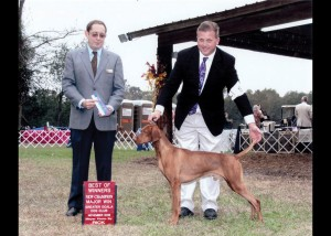 Killian 5thMajor BOW Ocala 2012 Championshp